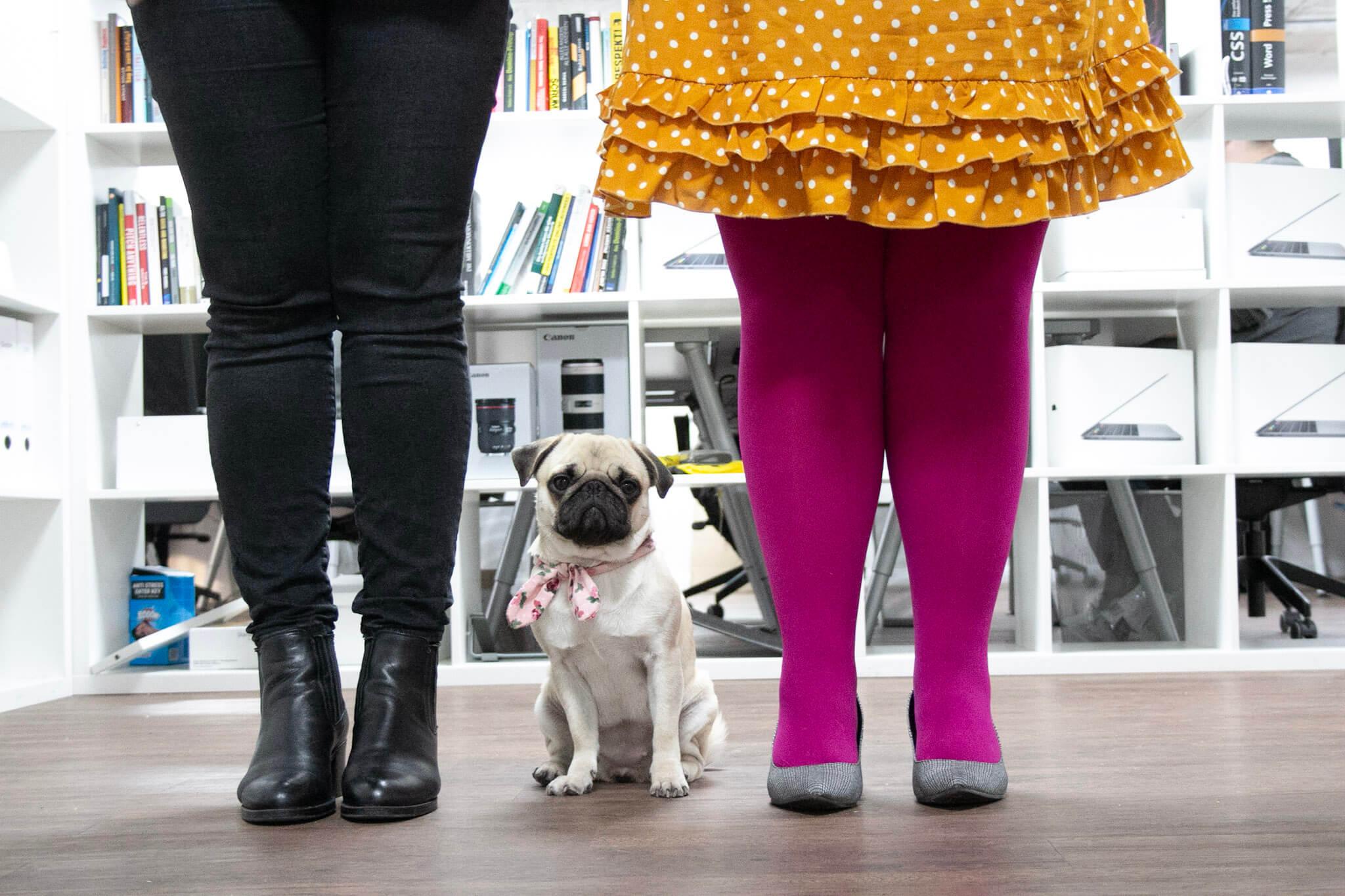 6 Tipps, um deine Individualität in deinem Personal Brand Fotoshooting in Szene zu setzen